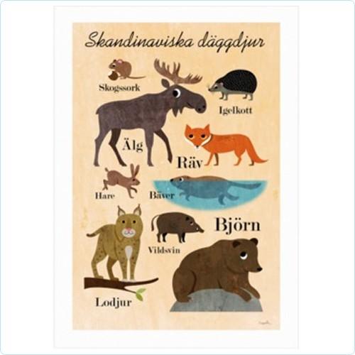 "Poster ""Skandinaviska djur"" Ingela P Arrhenius"