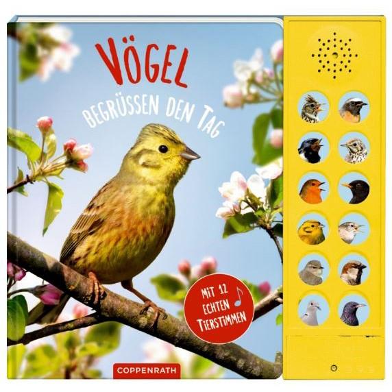 """Soundbuch """"Vögel begrüßen den Tag"""" Mit 12 echten Tierstimmen"""