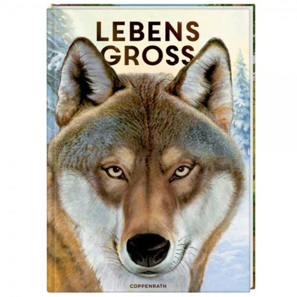 """Buch """"Lebensgroß - Tiere des Waldes"""" Nature Zoom"""