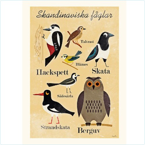 "Poster ""Skandinaviska faglar"" Ingela P Arrhenius"
